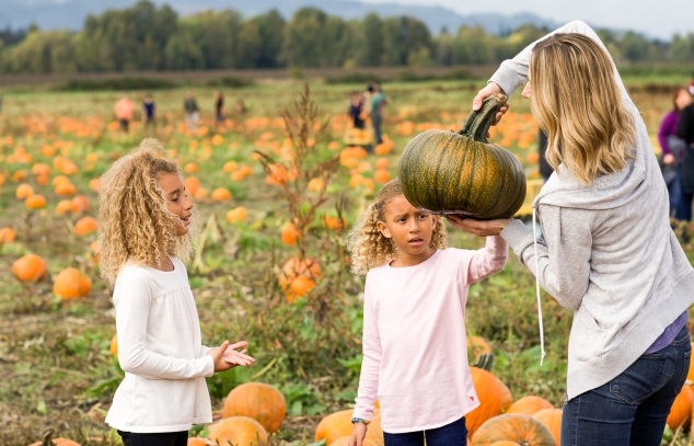 Pumpkin Patch-7346